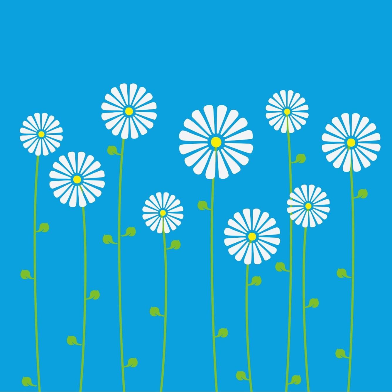 Kwiaty Po Angielsku Rose Roza Daisy Ingless Pl